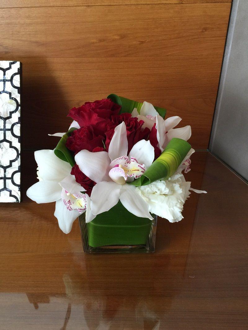 orquídeas blancas y rojas