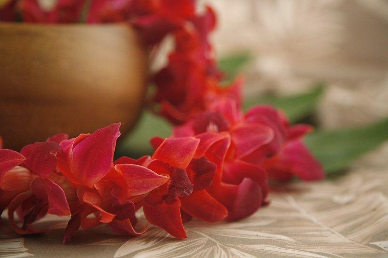 Decoración con orquídeas rojas