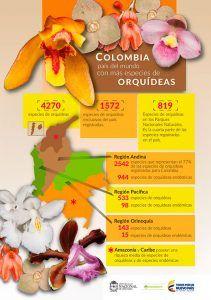 distribución de las orquídeas colombianas